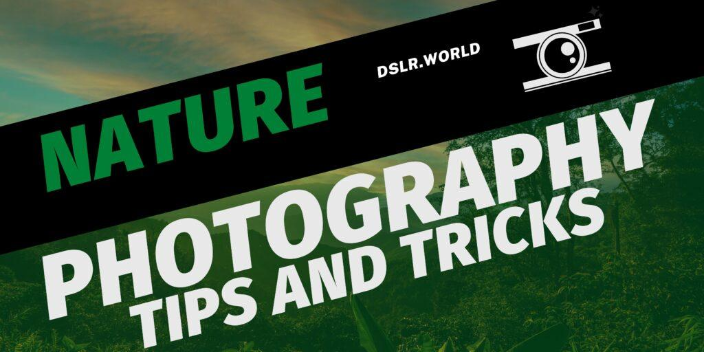 Nature Photography – Tips and Tricks